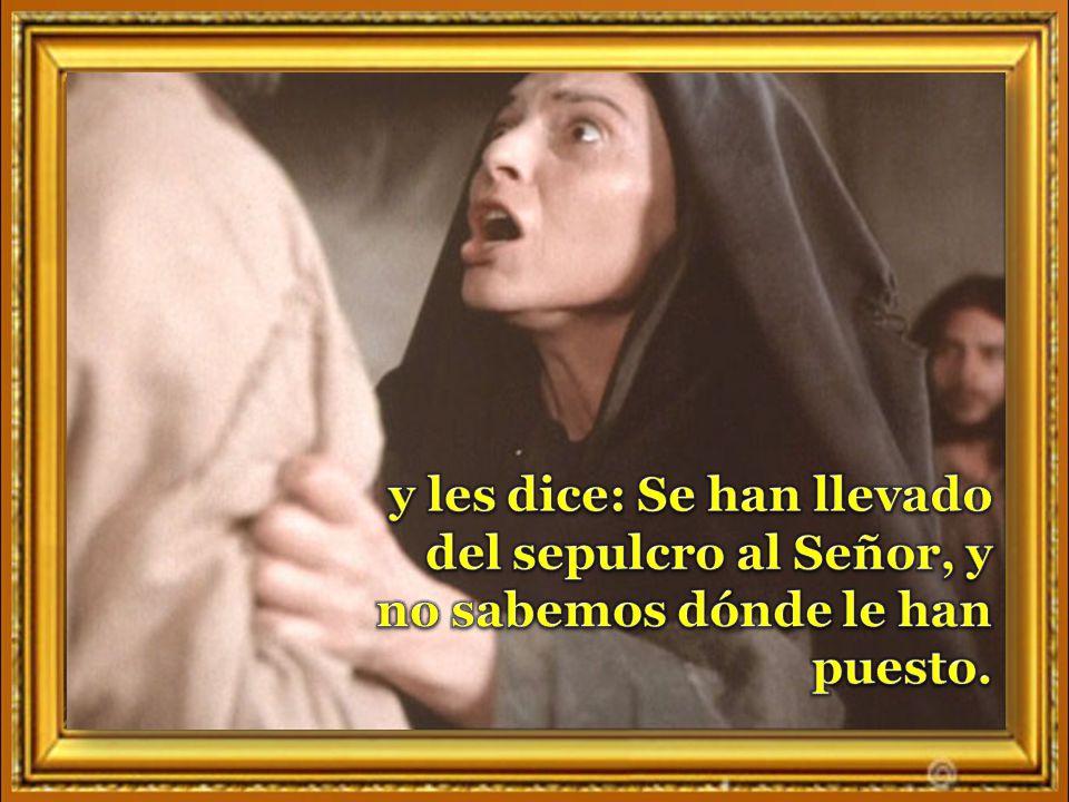 y les dice: Se han llevado del sepulcro al Señor, y no sabemos dónde le han puesto.