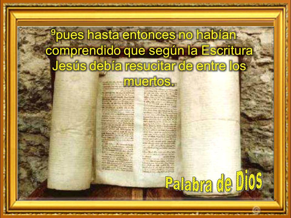 9pues hasta entonces no habían comprendido que según la Escritura Jesús debía resucitar de entre los muertos.