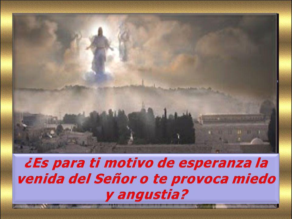 ¿Es para ti motivo de esperanza la venida del Señor o te provoca miedo y angustia