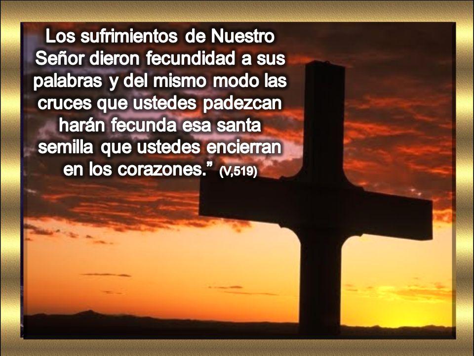 Los sufrimientos de Nuestro Señor dieron fecundidad a sus palabras y del mismo modo las cruces que ustedes padezcan harán fecunda esa santa semilla que ustedes encierran en los corazones. (V,519)
