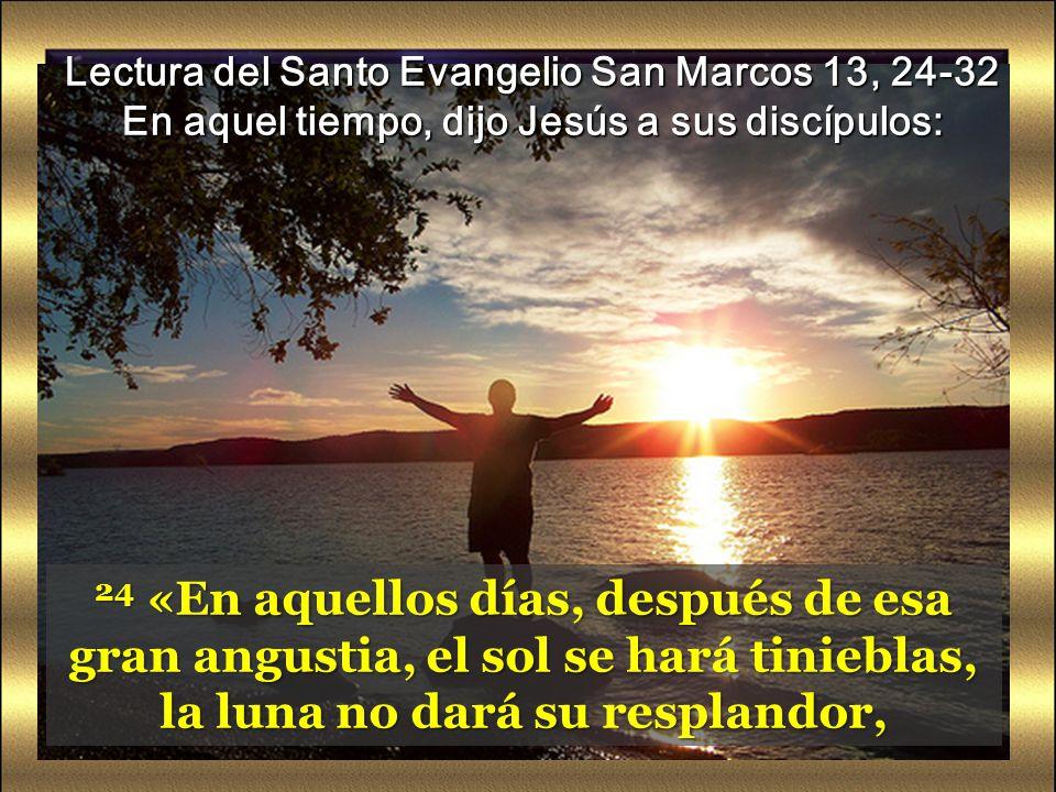 Lectura del Santo Evangelio San Marcos 13, 24-32