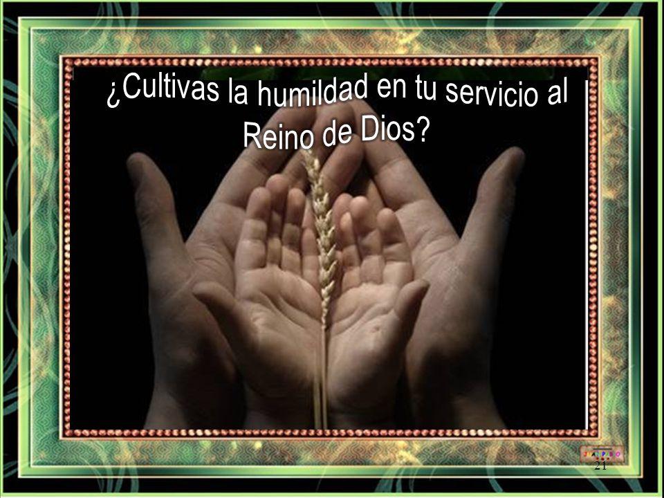 ¿Cultivas la humildad en tu servicio al Reino de Dios