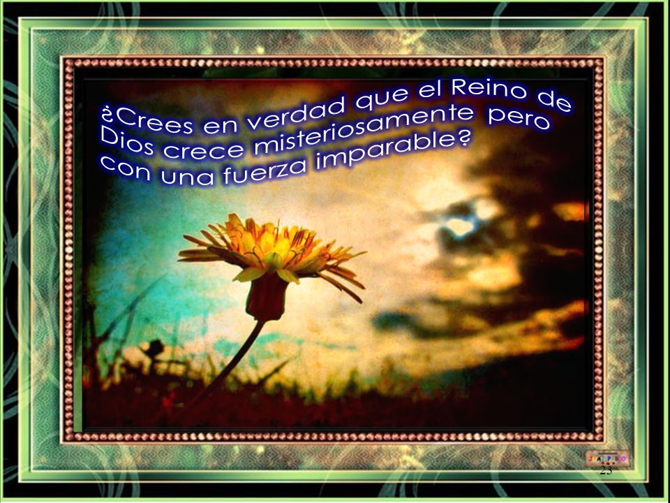 ¿Crees en verdad que el Reino de Dios crece misteriosamente pero con una fuerza imparable