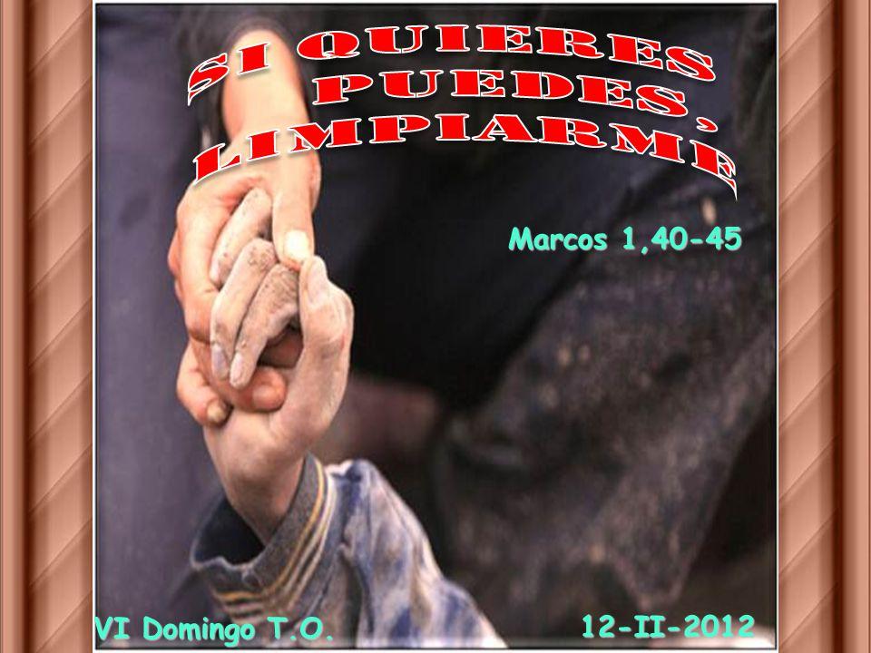 Si Quieres puedes, limpiarme Marcos 1,40-45 VI Domingo T.O. 12-II-2012