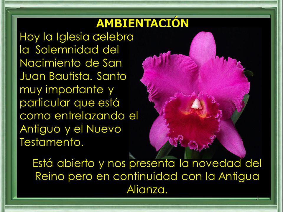 AMBIENTACIÓN: