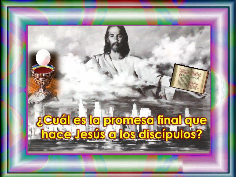¿Cuál es la promesa final que hace Jesús a los discípulos