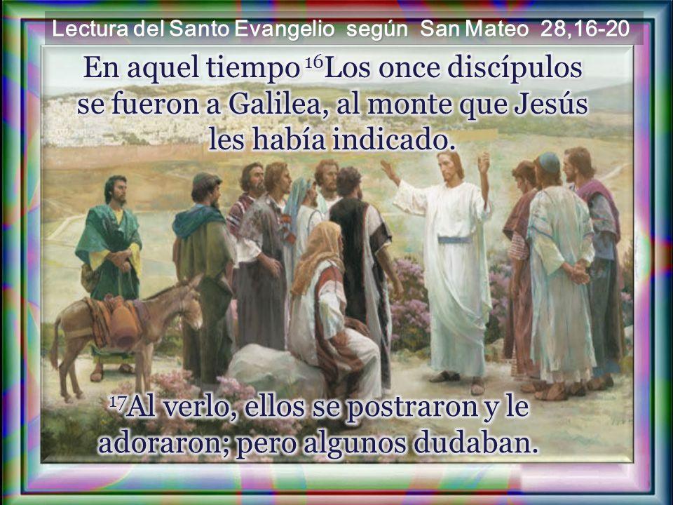 17Al verlo, ellos se postraron y le adoraron; pero algunos dudaban.