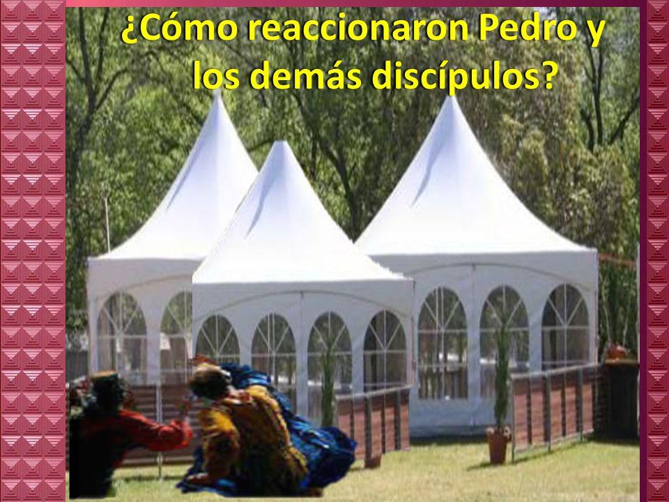 ¿Cómo reaccionaron Pedro y los demás discípulos