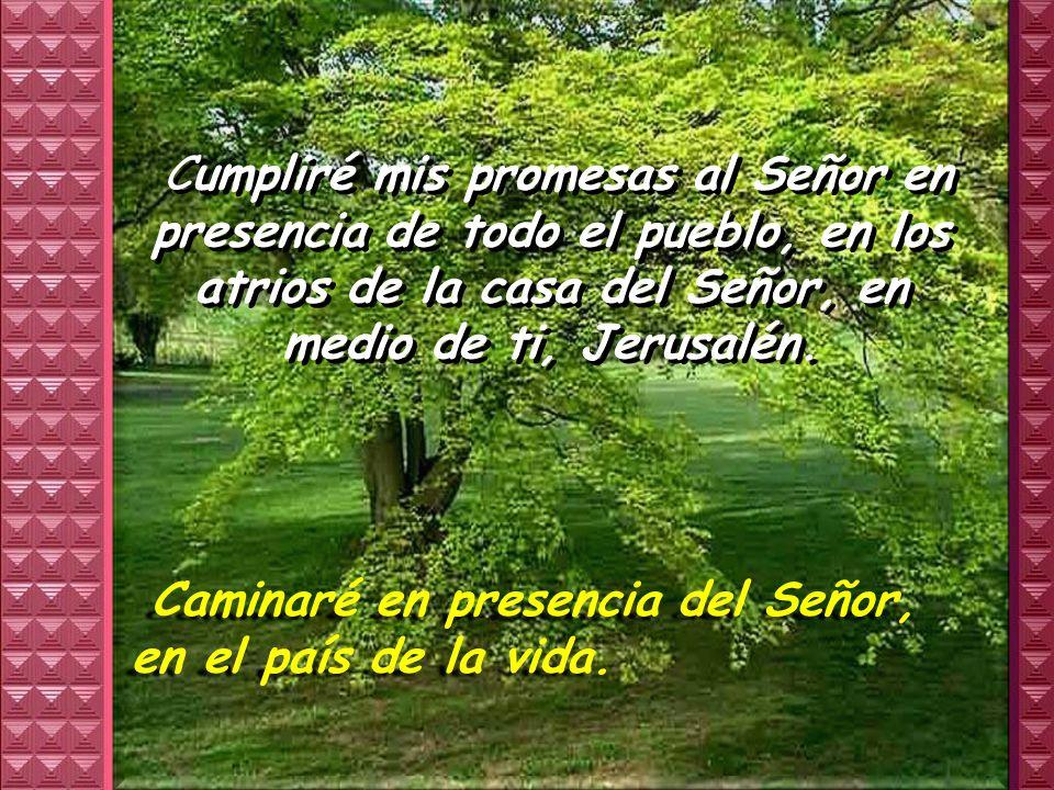 Cumpliré mis promesas al Señor en presencia de todo el pueblo, en los atrios de la casa del Señor, en