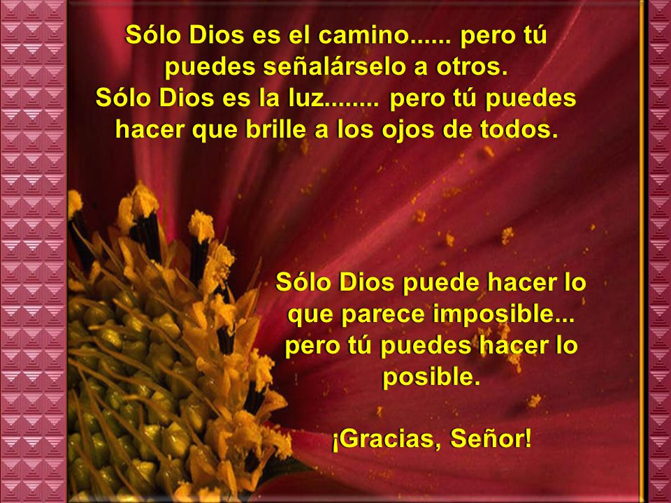 Sólo Dios es el camino...... pero tú puedes señalárselo a otros.