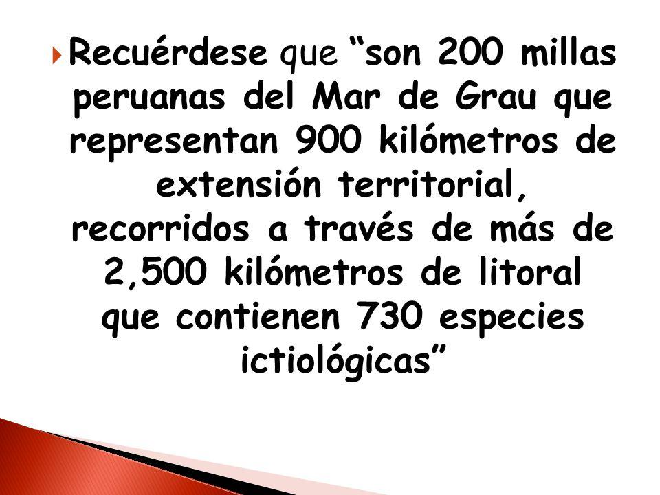 Recuérdese que son 200 millas peruanas del Mar de Grau que representan 900 kilómetros de extensión territorial, recorridos a través de más de 2,500 kilómetros de litoral que contienen 730 especies ictiológicas
