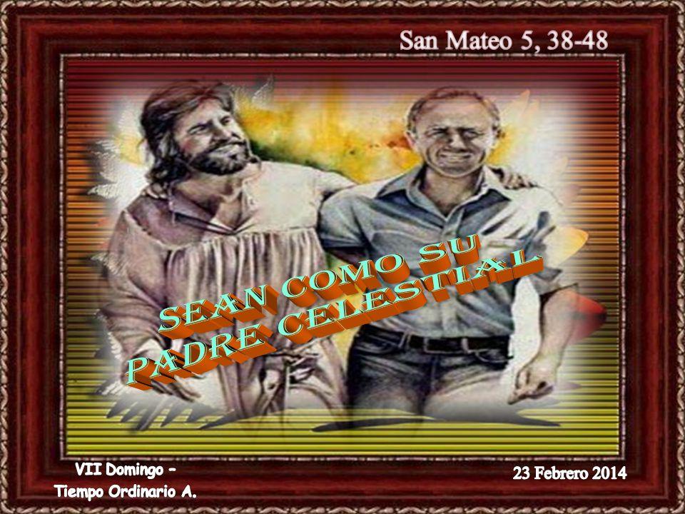 SEAN COMO SU PADRE CELESTIAL San Mateo 5, 38-48 23 Febrero 2014