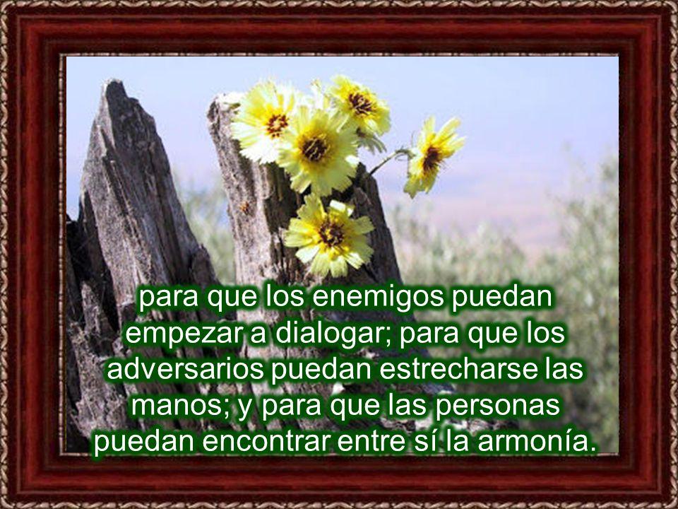para que los enemigos puedan empezar a dialogar; para que los adversarios puedan estrecharse las manos; y para que las personas puedan encontrar entre sí la armonía.