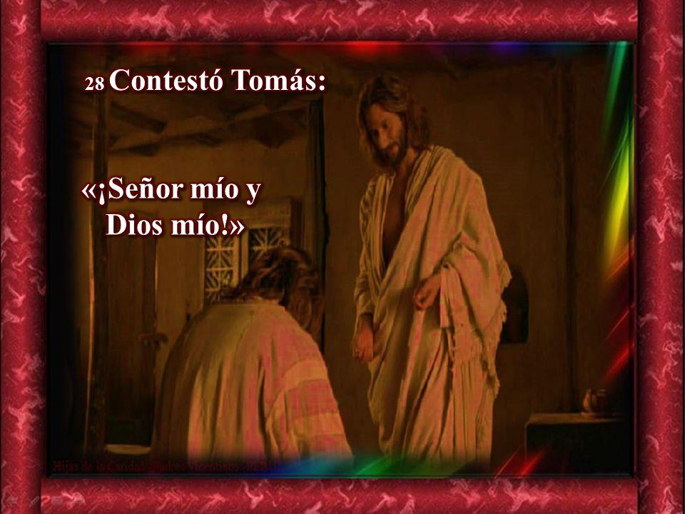28 Contestó Tomás: «¡Señor mío y Dios mío!»
