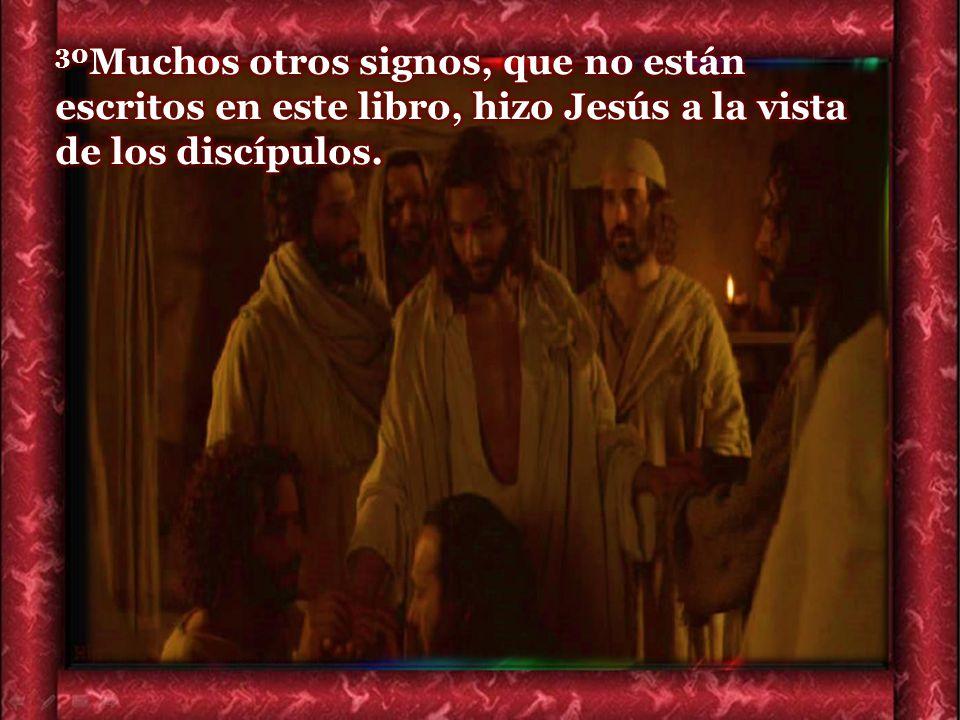 30Muchos otros signos, que no están escritos en este libro, hizo Jesús a la vista de los discípulos.