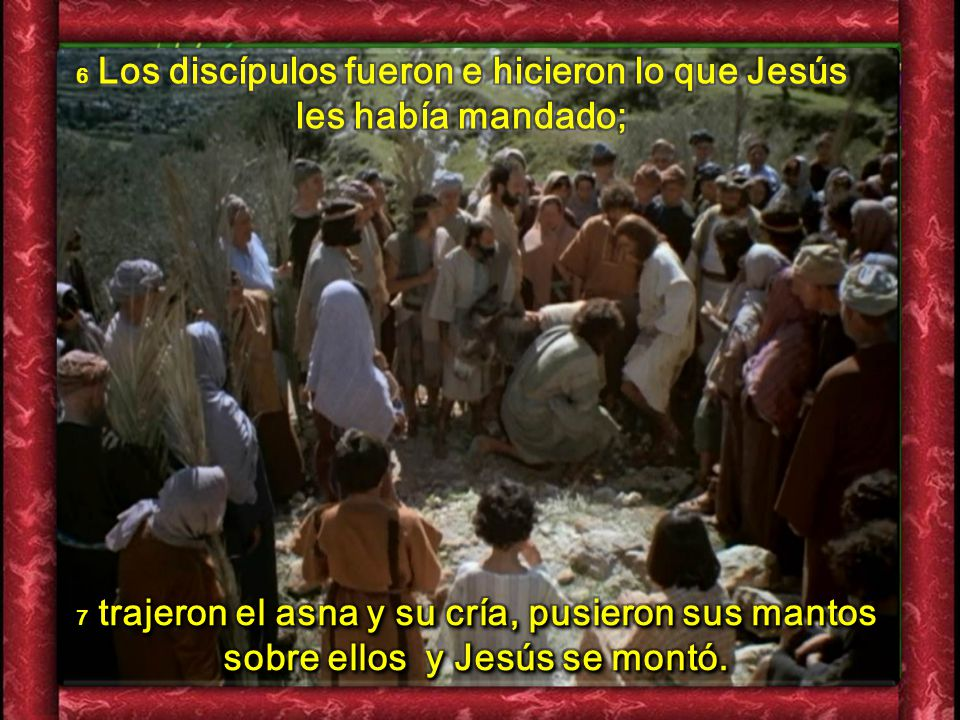 6 Los discípulos fueron e hicieron lo que Jesús les había mandado;