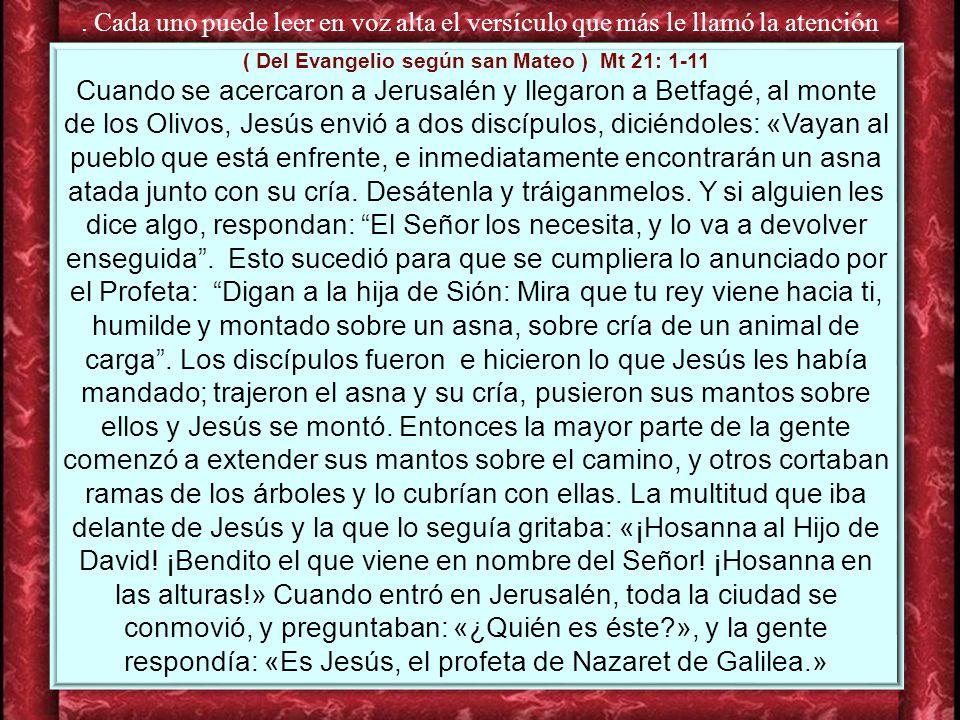 ( Del Evangelio según san Mateo ) Mt 21: 1-11