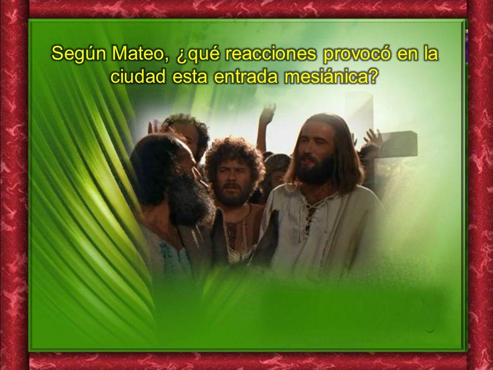 Según Mateo, ¿qué reacciones provocó en la ciudad esta entrada mesiánica