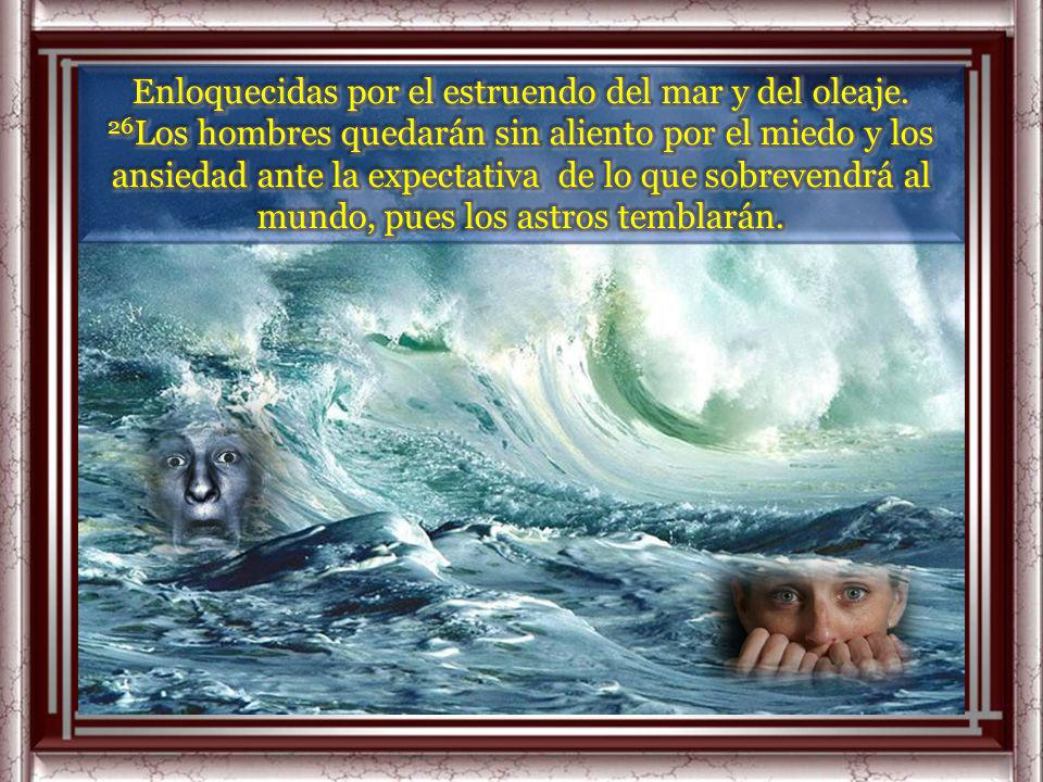 Enloquecidas por el estruendo del mar y del oleaje