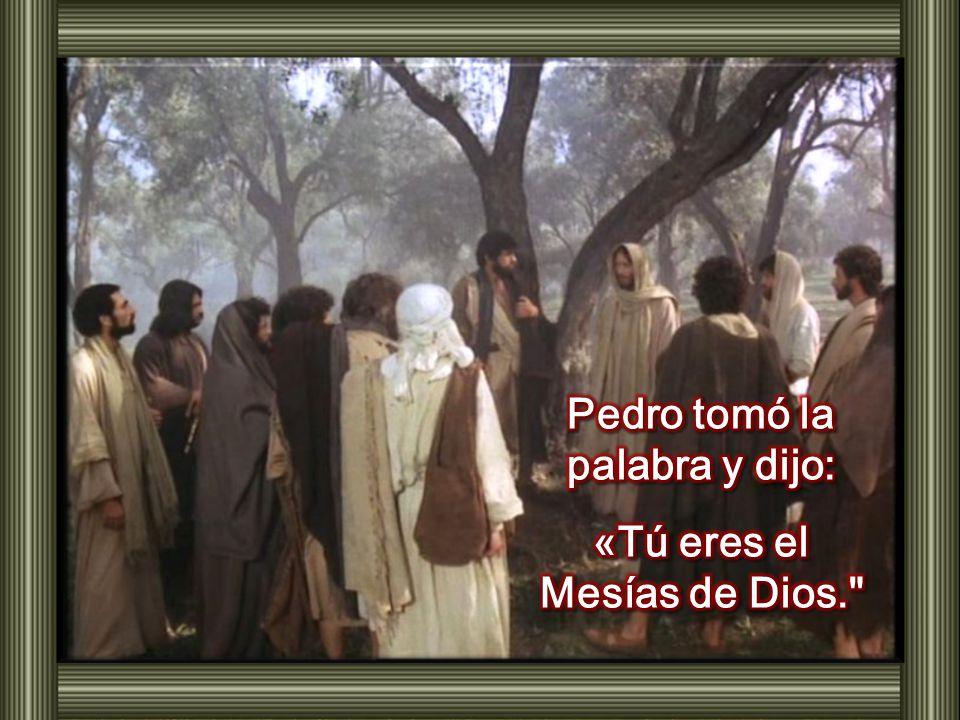 Pedro tomó la palabra y dijo: «Tú eres el Mesías de Dios.