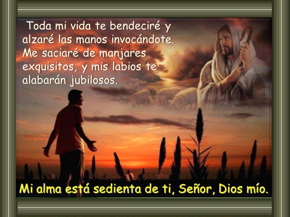 Mi alma está sedienta de ti, Señor, Dios mío.