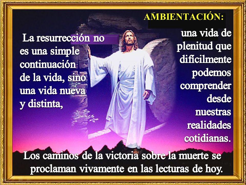 La resurrección no es una simple continuación de la vida, sino