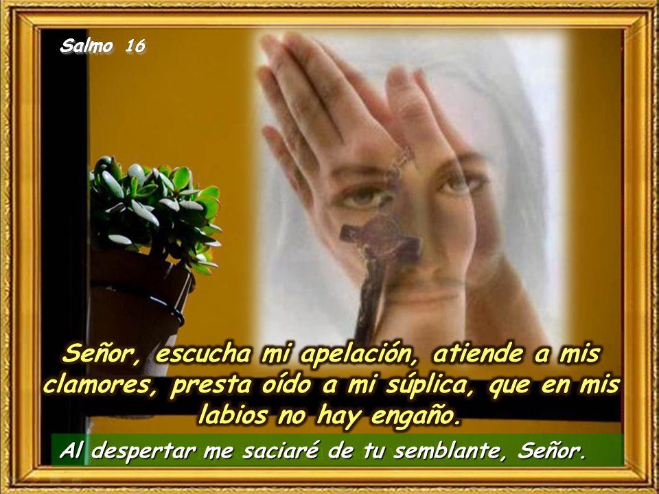 Salmo 16 Señor, escucha mi apelación, atiende a mis clamores, presta oído a mi súplica, que en mis labios no hay engaño.