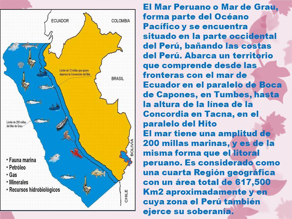 El Mar Peruano o Mar de Grau, forma parte del Océano Pacífico y se encuentra situado en la parte occidental del Perú, bañando las costas del Perú. Abarca un territorio que comprende desde las fronteras con el mar de Ecuador en el paralelo de Boca de Capones, en Tumbes, hasta la altura de la línea de la Concordia en Tacna, en el paralelo del Hito