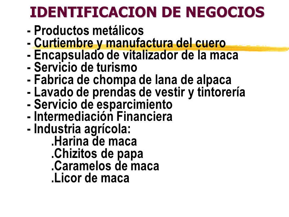 IDENTIFICACION DE NEGOCIOS