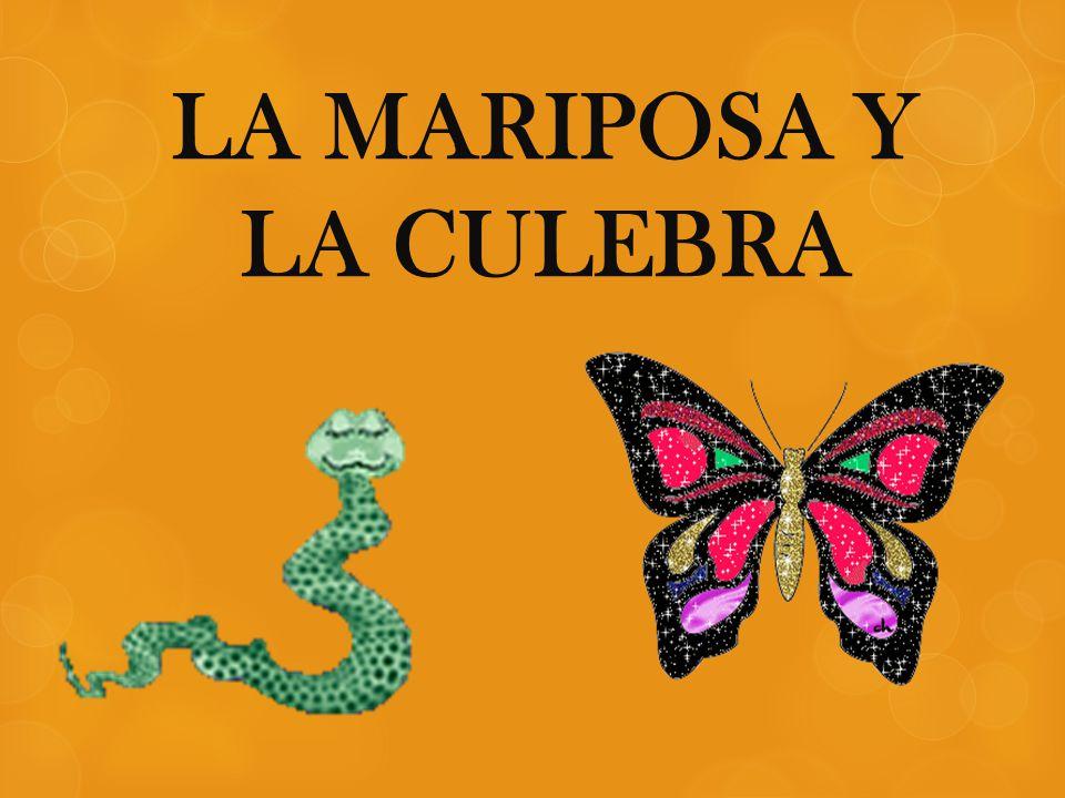LA MARIPOSA Y LA CULEBRA
