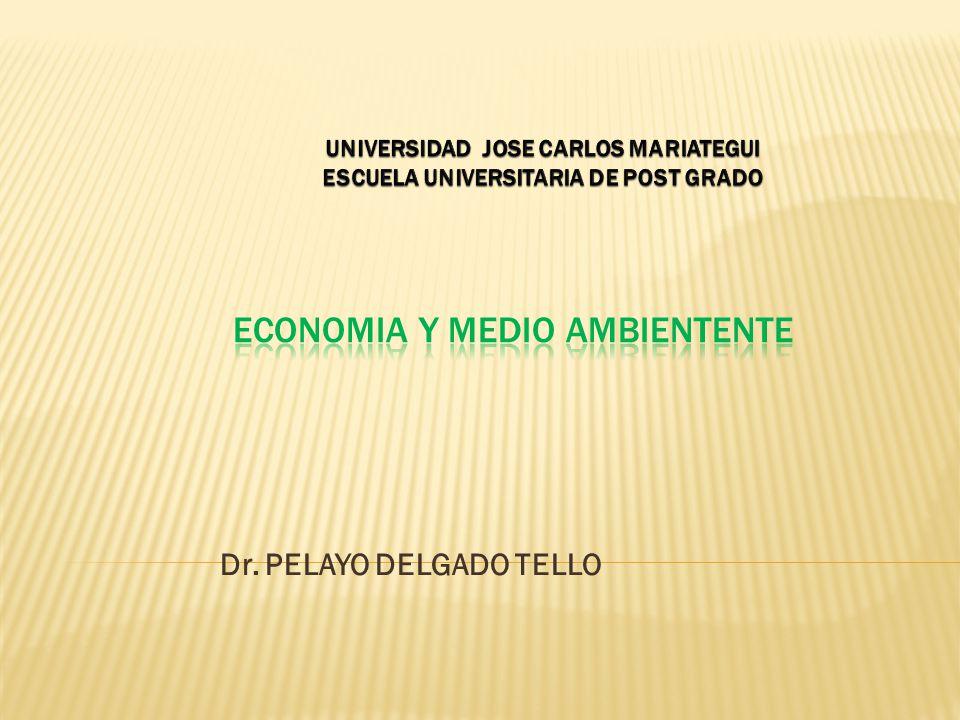 ECONOMIA Y MEDIO AMBIENTENTE