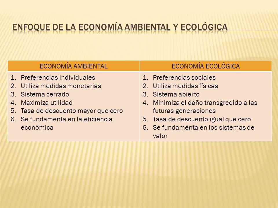 Enfoque de la economía ambiental y ecológica