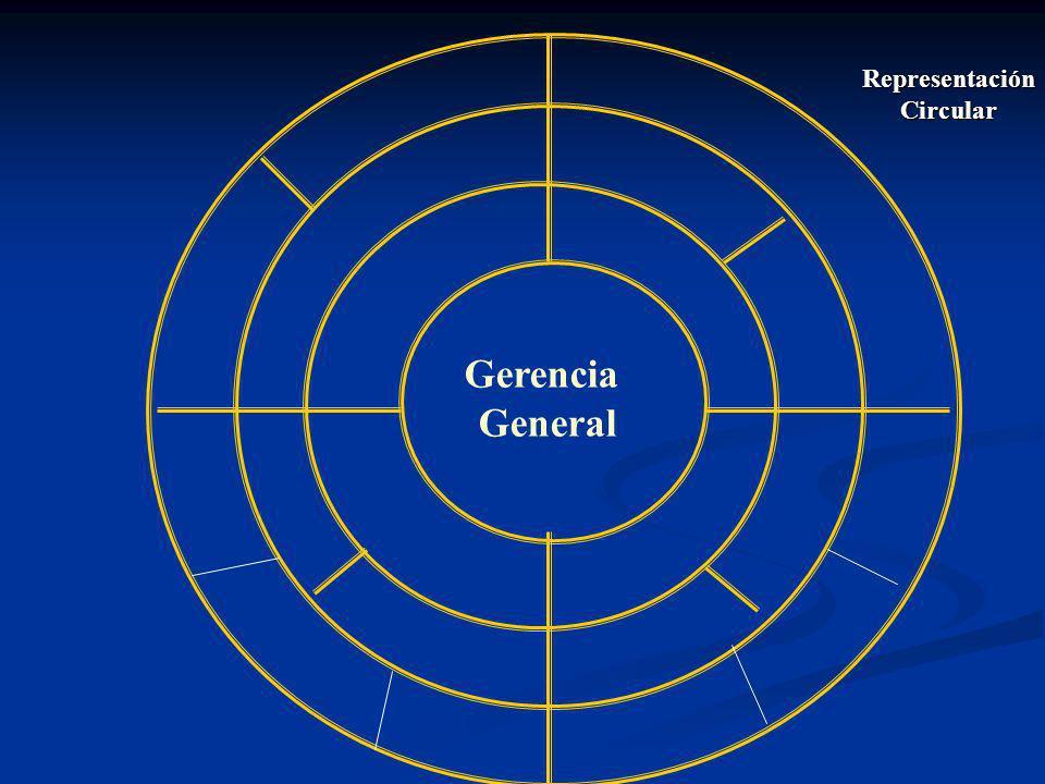 Representación Circular Gerencia General