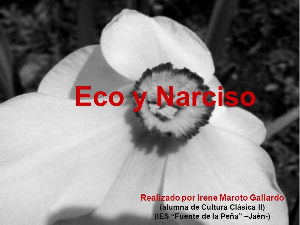 Eco y Narciso Realizado por Irene Maroto Gallardo