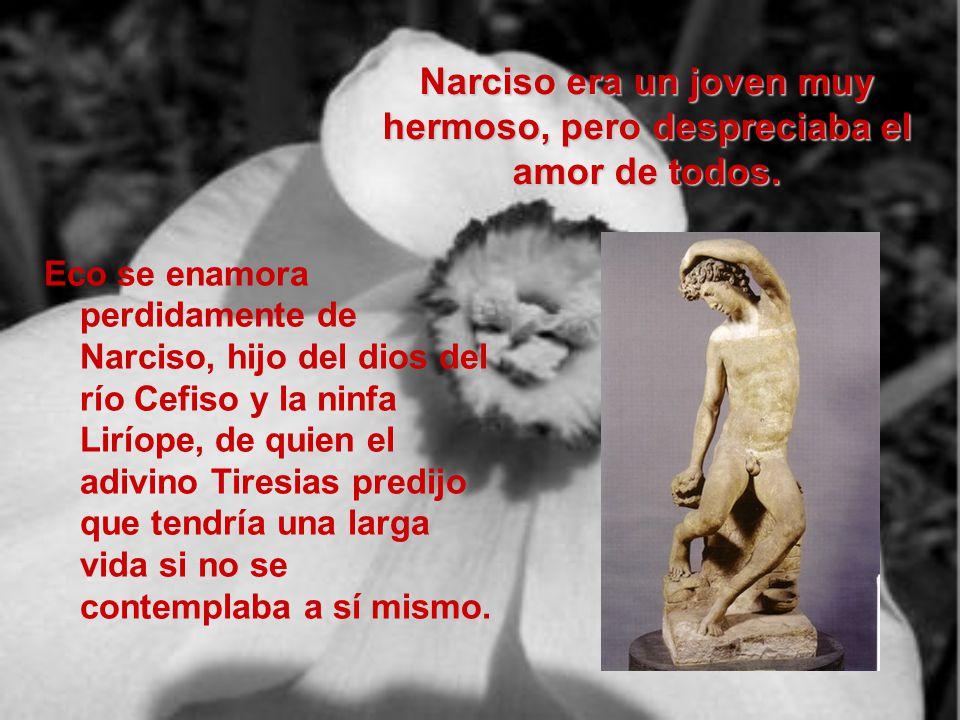 Narciso era un joven muy hermoso, pero despreciaba el amor de todos.