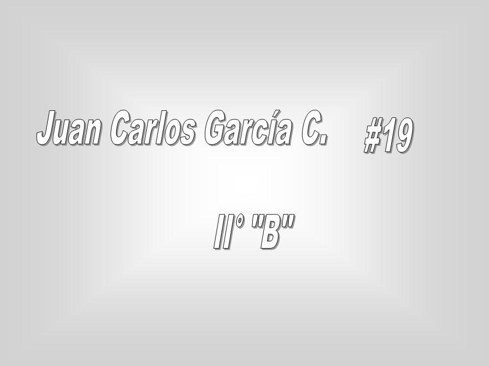 Juan Carlos García C. #19 II° B