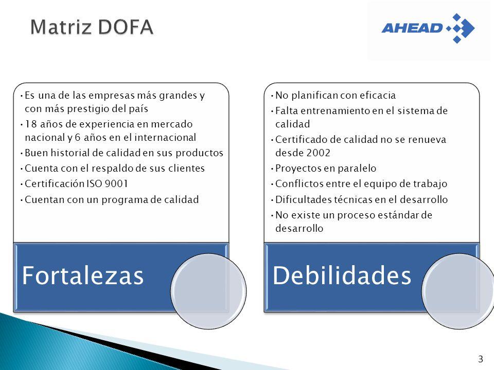 Fortalezas Debilidades Matriz DOFA 3