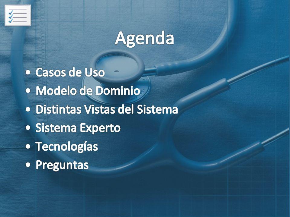 Agenda Casos de Uso Modelo de Dominio Distintas Vistas del Sistema