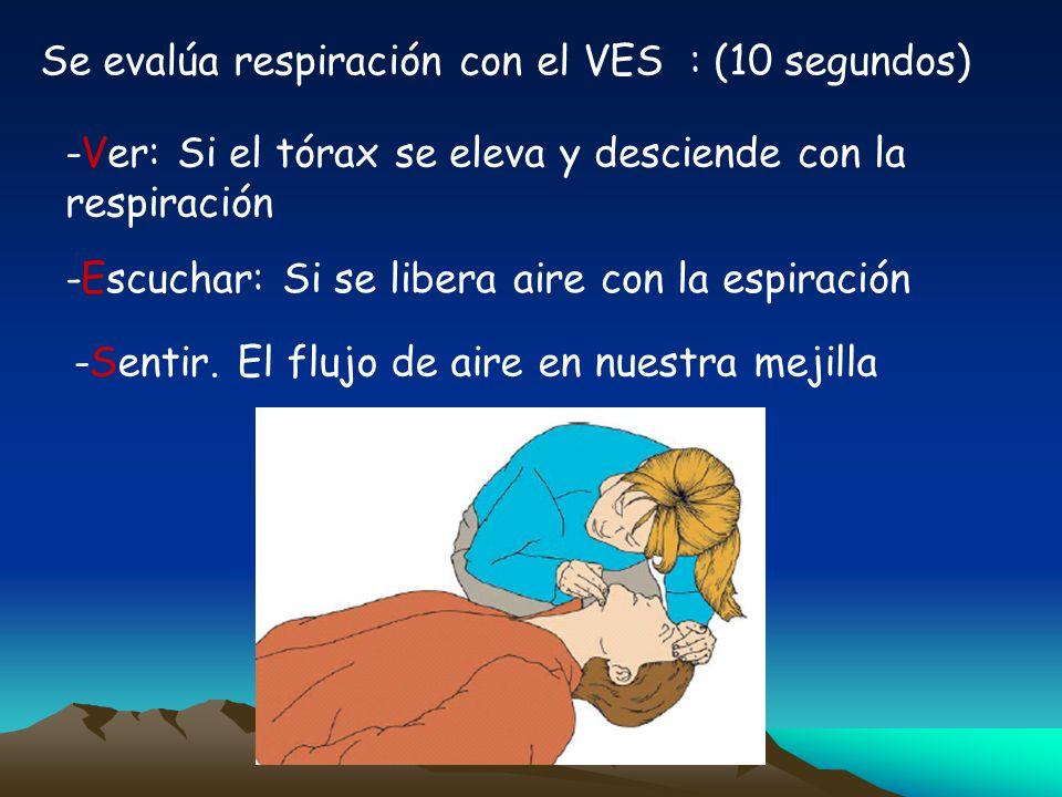 Se evalúa respiración con el VES : (10 segundos)
