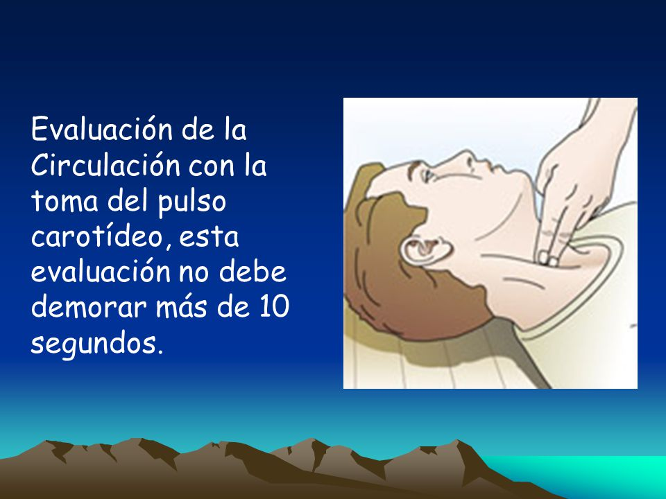 Evaluación de la Circulación con la toma del pulso carotídeo, esta evaluación no debe demorar más de 10 segundos.