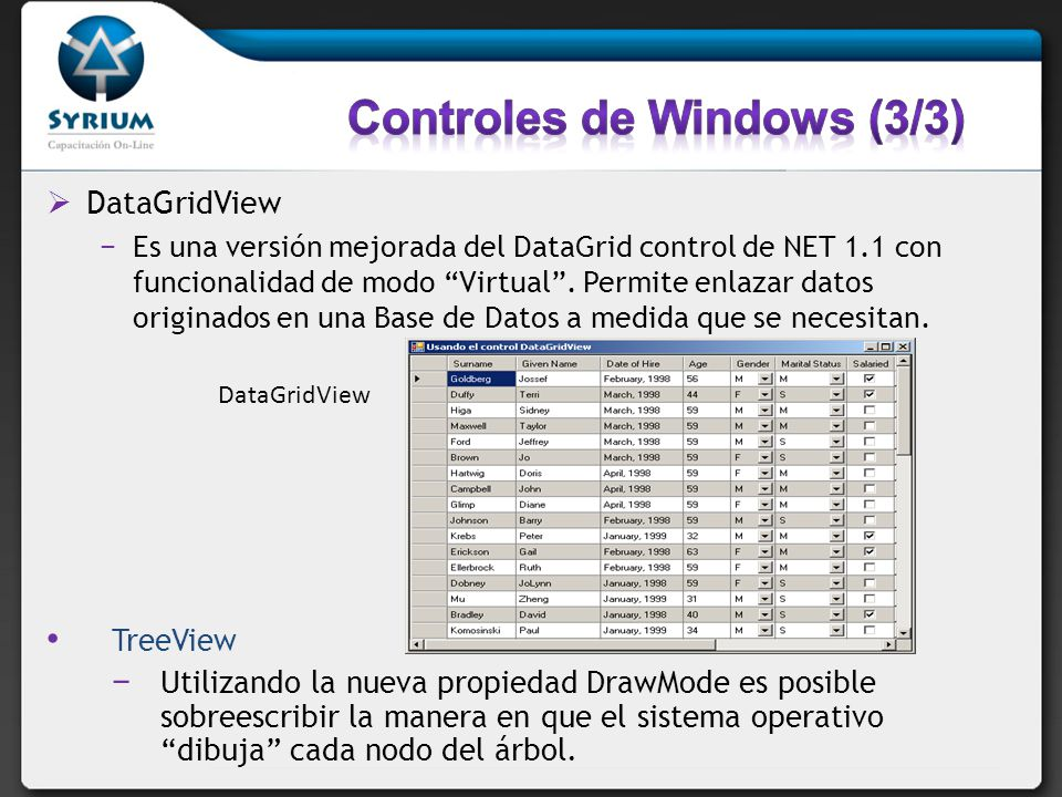Controles de Windows (3/3)