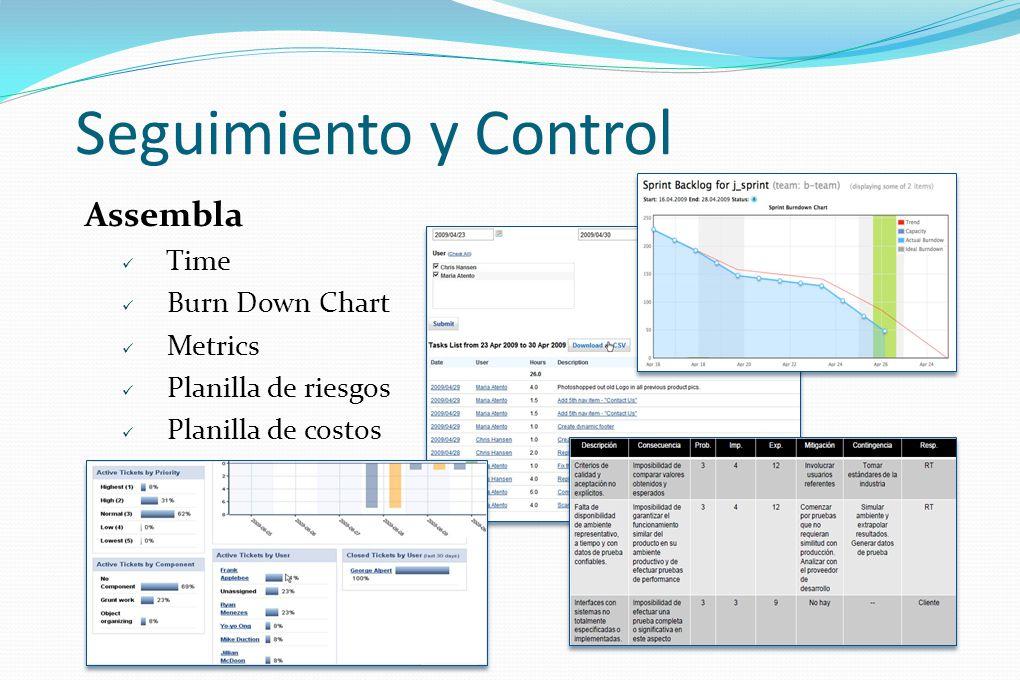 Seguimiento y Control Assembla Time Burn Down Chart Metrics