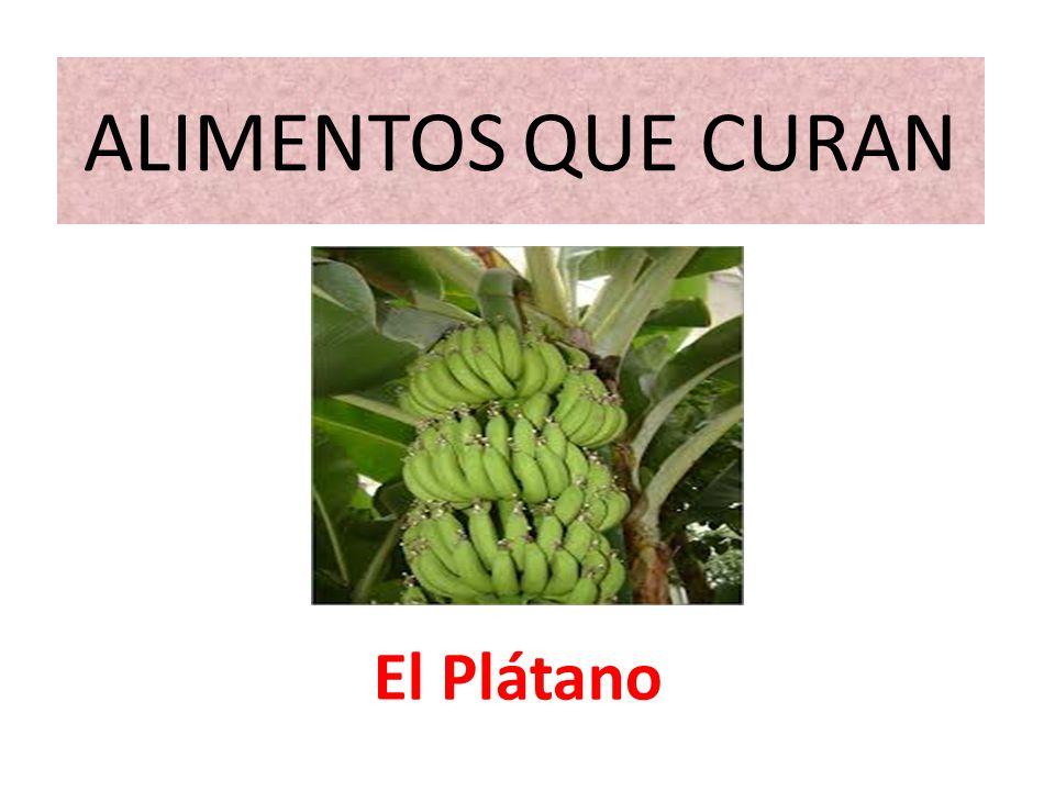 ALIMENTOS QUE CURAN El Plátano