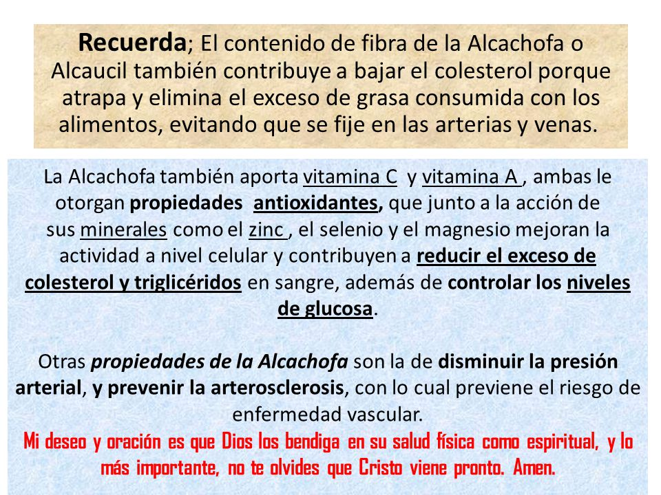 Recuerda; El contenido de fibra de la Alcachofa o Alcaucil también contribuye a bajar el colesterol porque atrapa y elimina el exceso de grasa consumida con los alimentos, evitando que se fije en las arterias y venas.