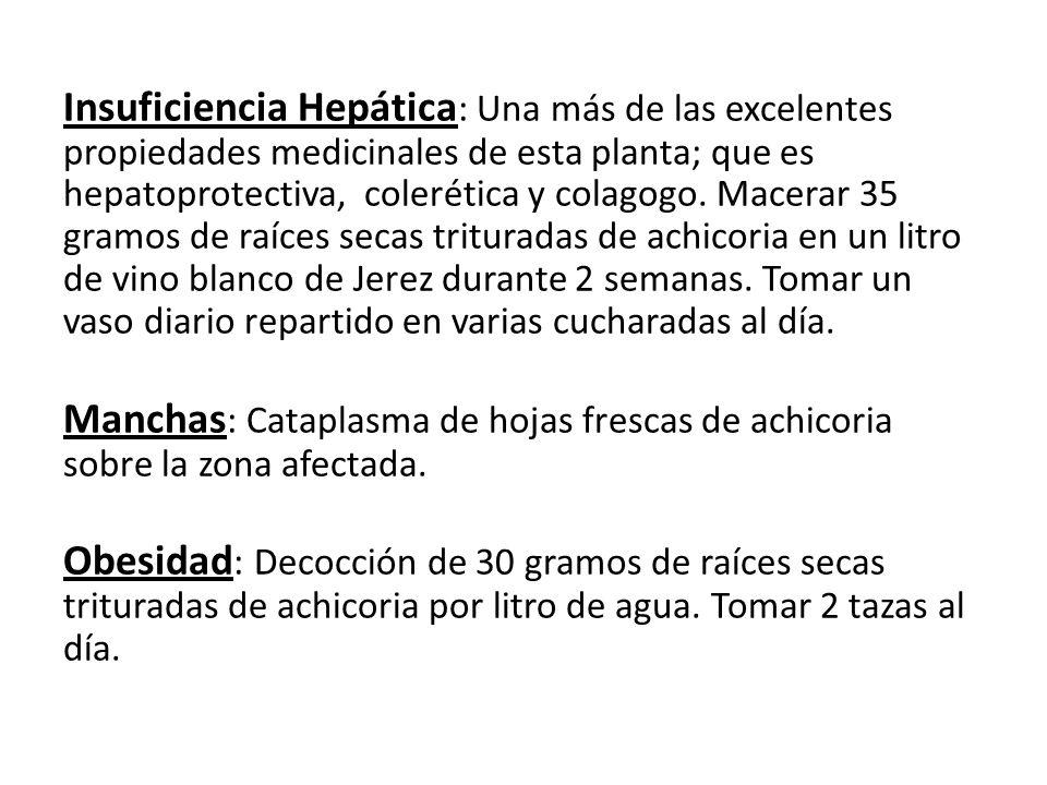 Insuficiencia Hepática: Una más de las excelentes propiedades medicinales de esta planta; que es hepatoprotectiva, colerética y colagogo.