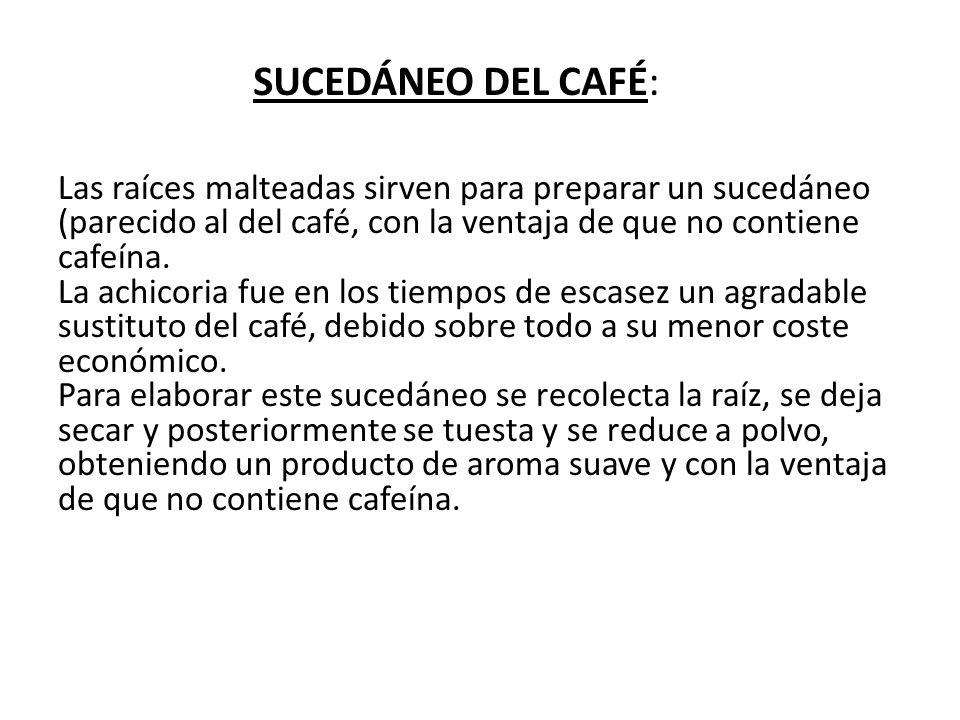 SUCEDÁNEO DEL CAFÉ:
