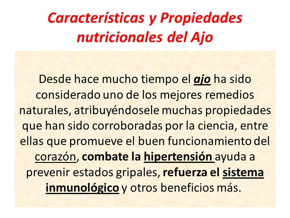 Características y Propiedades nutricionales del Ajo