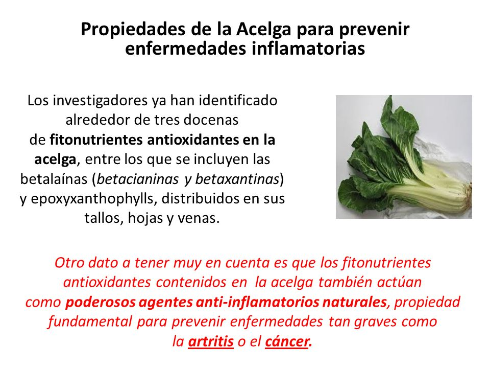 Propiedades de la Acelga para prevenir enfermedades inflamatorias
