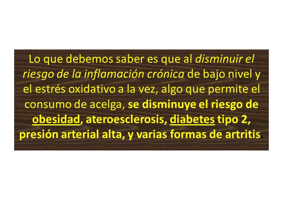 Lo que debemos saber es que al disminuir el riesgo de la inflamación crónica de bajo nivel y el estrés oxidativo a la vez, algo que permite el consumo de acelga, se disminuye el riesgo de obesidad, ateroesclerosis, diabetes tipo 2, presión arterial alta, y varias formas de artritis.