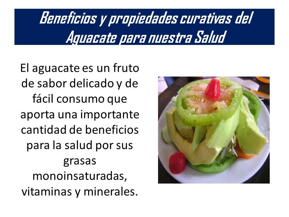 Beneficios y propiedades curativas del Aguacate para nuestra Salud